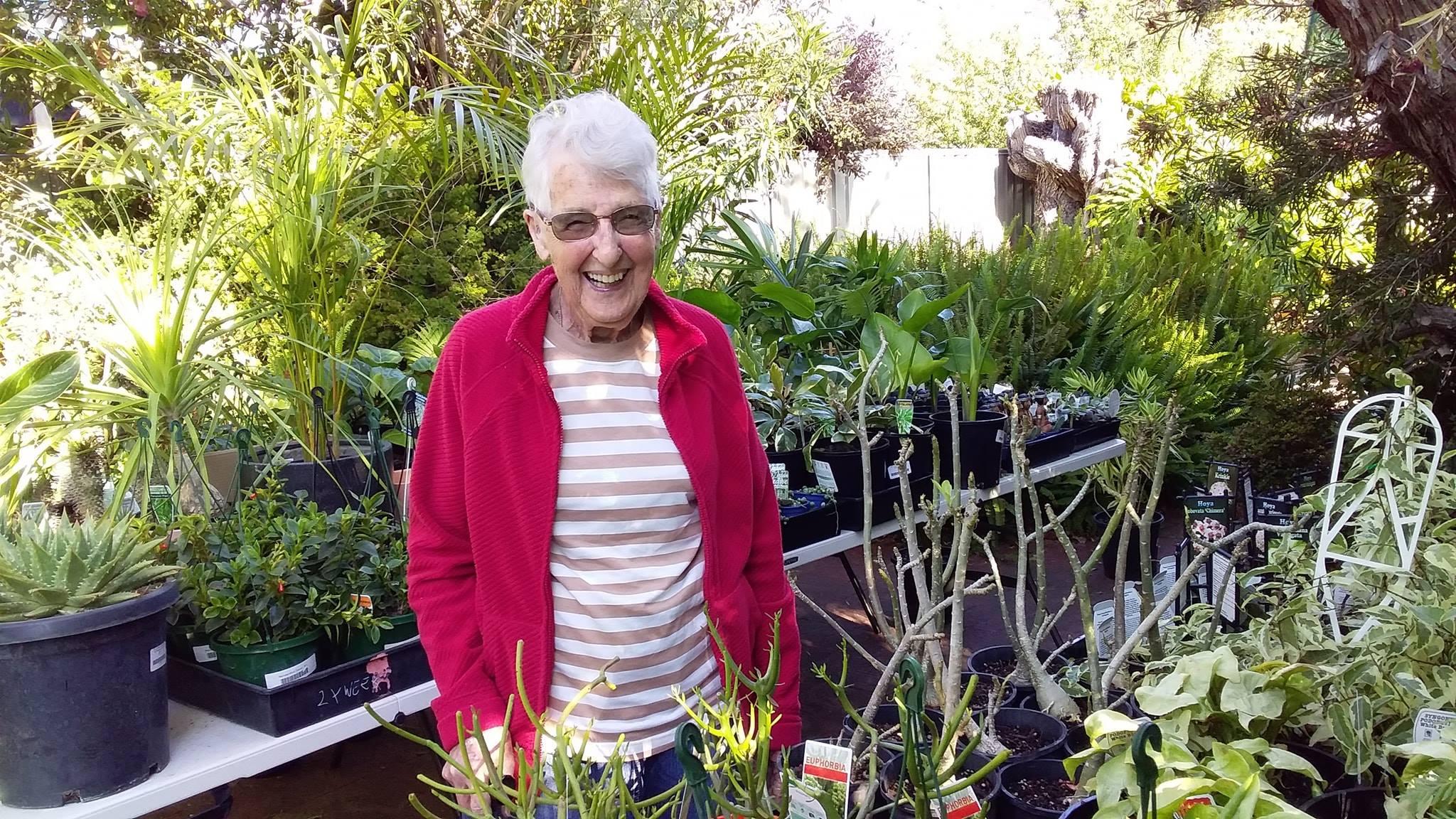 Granny Plant Sale