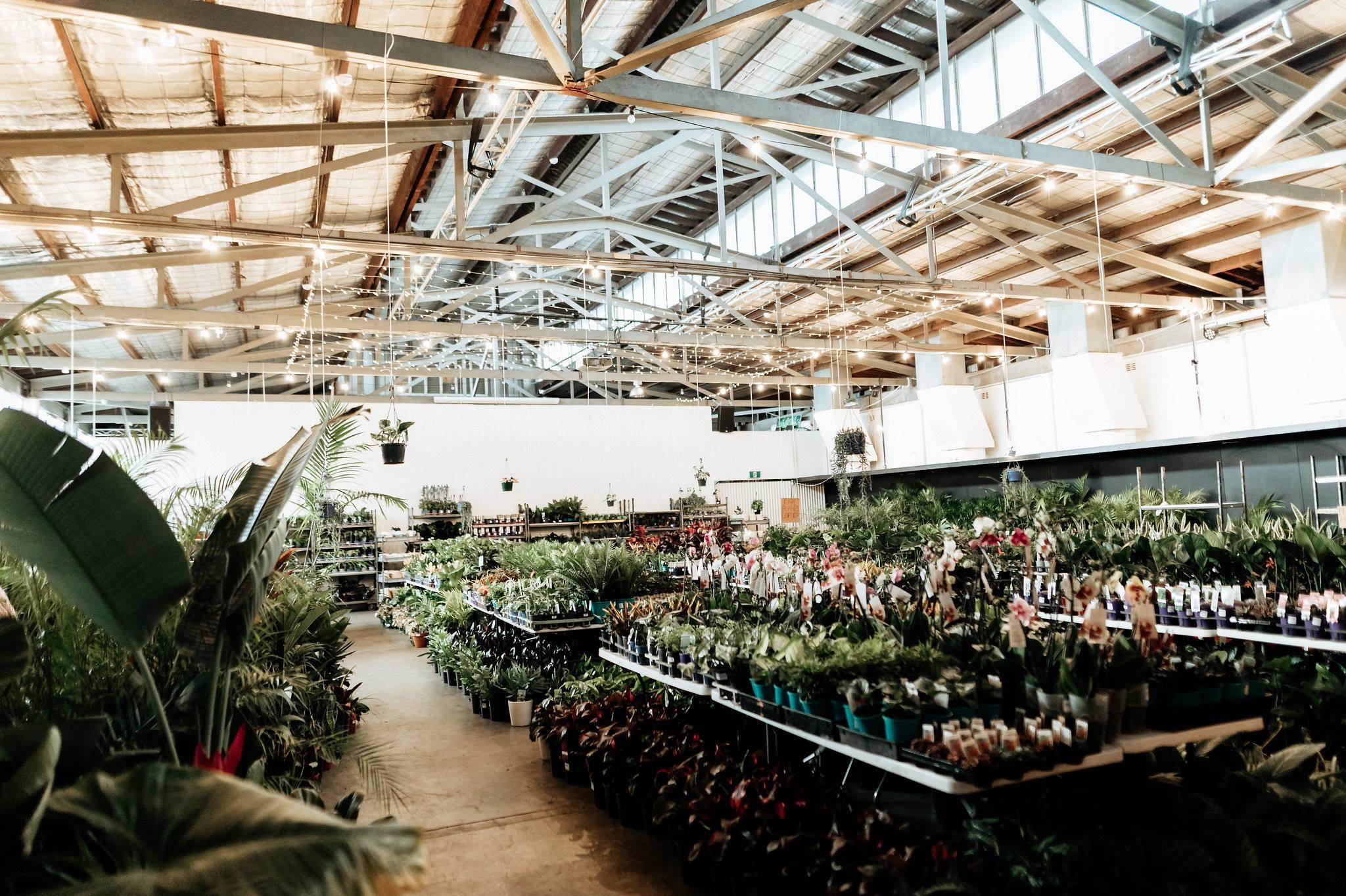 Perth Plant Sale Online