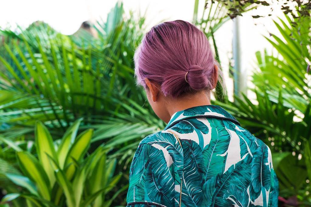 Sydney Plant Sale Online